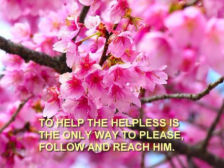 Help the Helpless