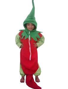 jual kostum buah