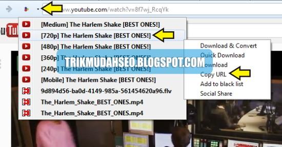 cara mendapatkan URL link download untuk dimasukkan ke Youtube Downloader
