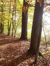 Łagowska jesień