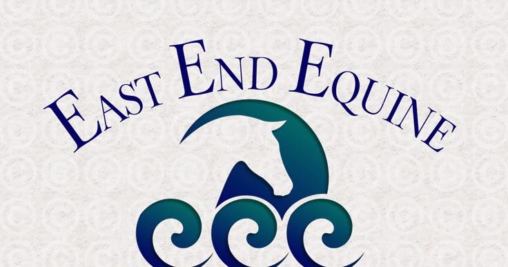 Horse Logos: Equine Veterinary Logo Designs