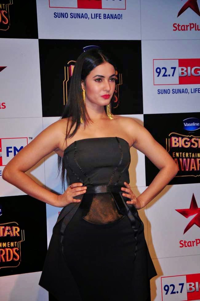 Sonal Chauhan At BIG STAR Entertainment Awards 2014