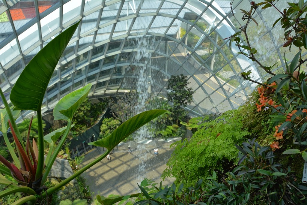 Cloud Forest Singapore waterfall