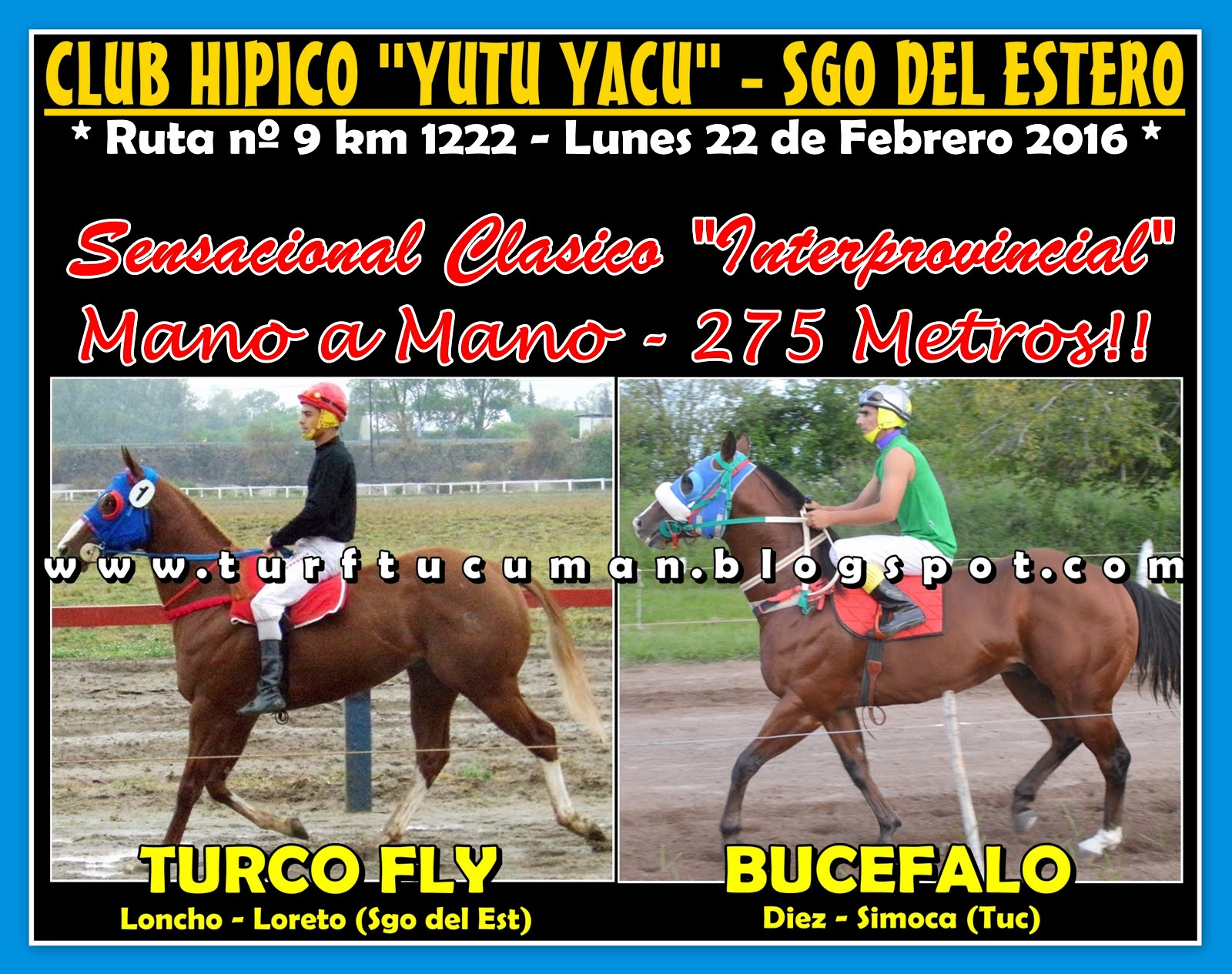 BUCEFALO VS TURCO FLY