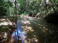 Bassa de reserva d'aigua per alimentar els canals