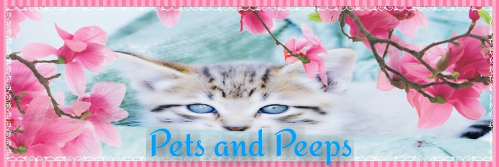 Pets and Peeps