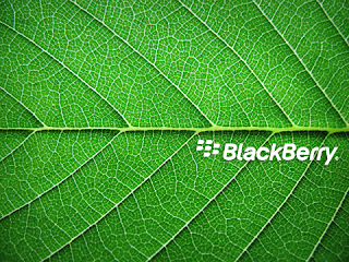 wallpaper blackberry 8520