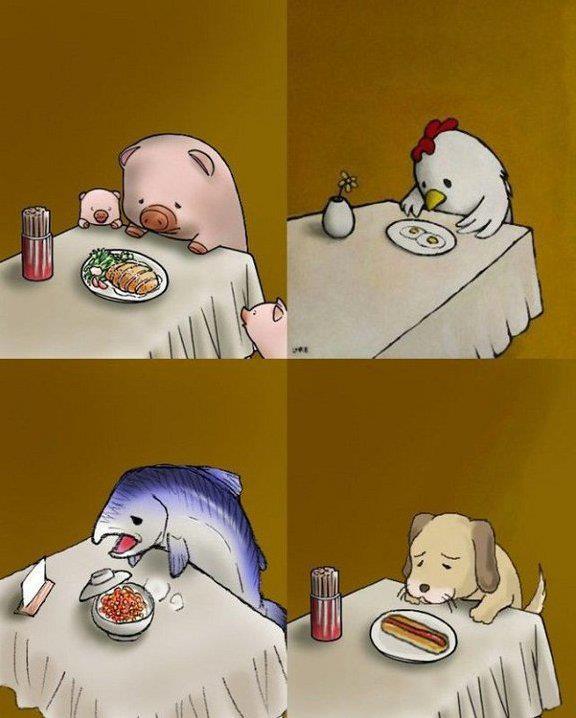 Pensa sempre se quel 'cibo' abbia causato 'sofferenza' a qualcuno...♥
