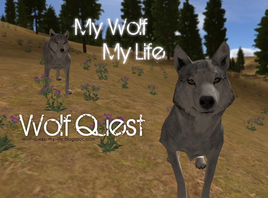My Wolf, My Life... Wolf Quest
