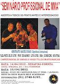 """""""SEMINÁRIO TÉCNICO DE MMA"""""""