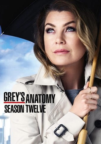 Anatomia de Grey Temporada 12 audio Español
