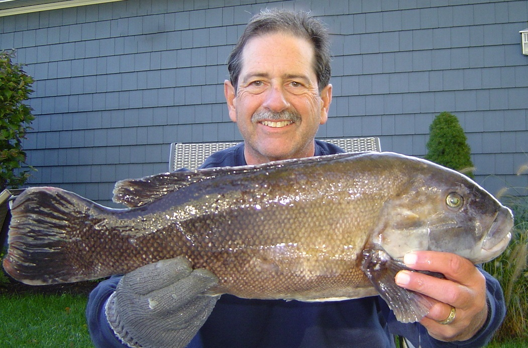 No fluke fishing october 2012 for Tautog fishing rigs