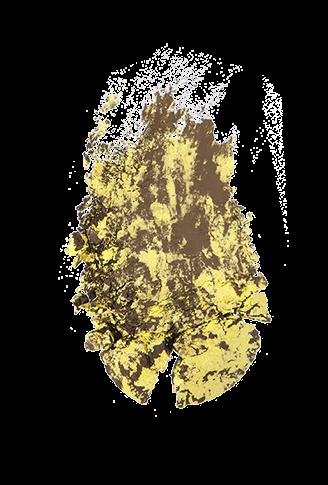 p2 Limited Edition: Culture & Spirit - color clash eye shadow…wet+dry - www.annitschkasblog.de