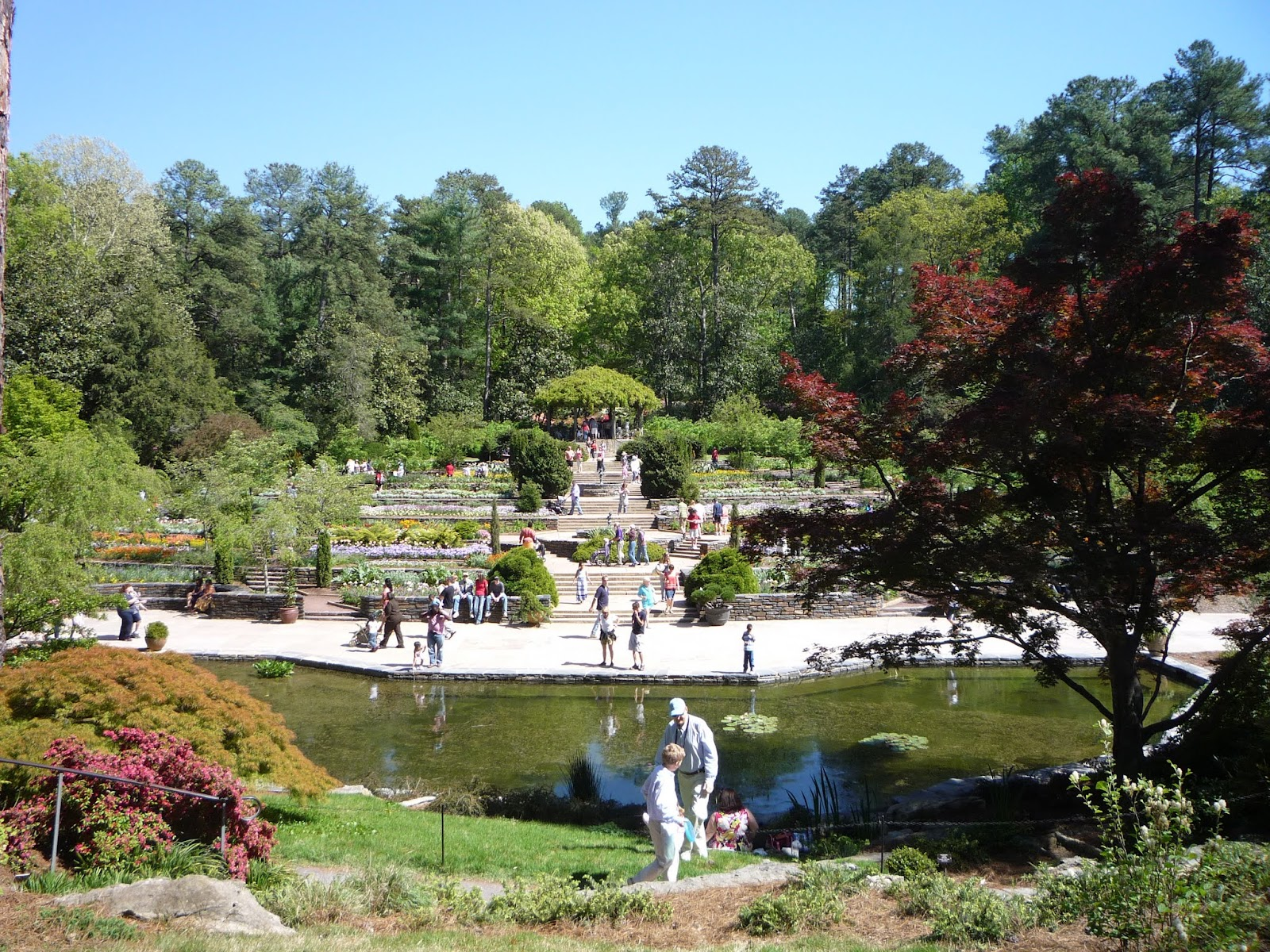 Duke Botanical Gardens O Jpg Gardens Duke November 2013