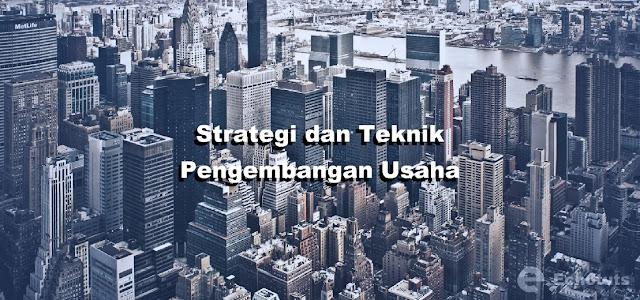 Strategi dan Teknik Pengembangan Usaha - Kewirausahaan - echotuts