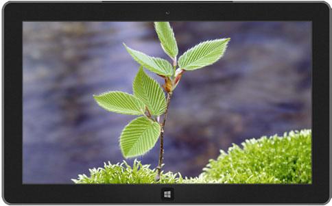 Fidanlar+Windows+8+temas%C4%B1 10 Tane Güzel Windows 8 Temaları ücretsiz indirin