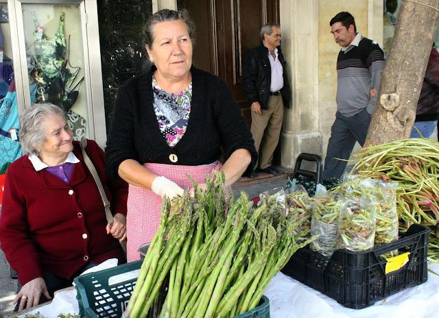 Wild asparagus, jerez de la frontera, Spain.
