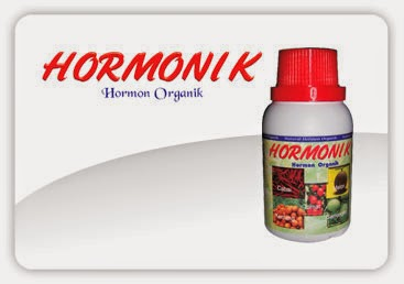 budidaya lele organik menggunakan hormonik