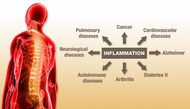 Investigarea reactiei inflamatorii