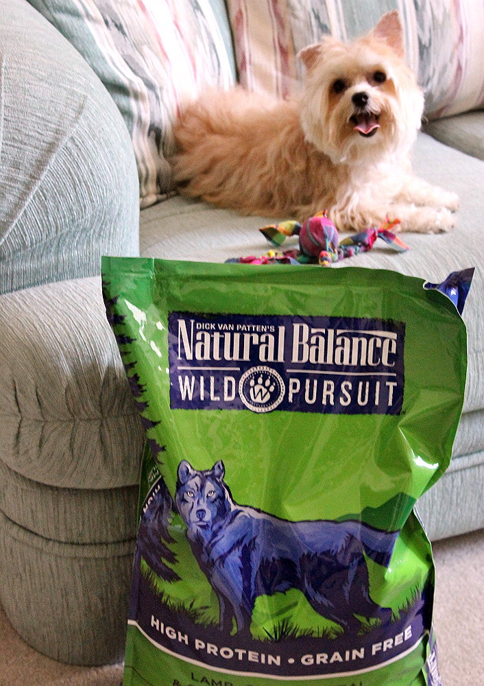 New #NaturalBalance #WildPursuit offers a high protein, grain free, selection of quality foods for cats and dogs, inspired by their ancestral diet. (ad)