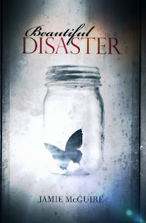 Beautiful Disaster eBook en PDF