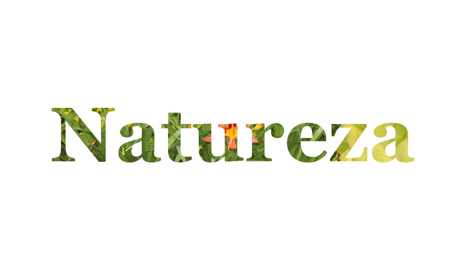 Titulo Natureza 1920x1080