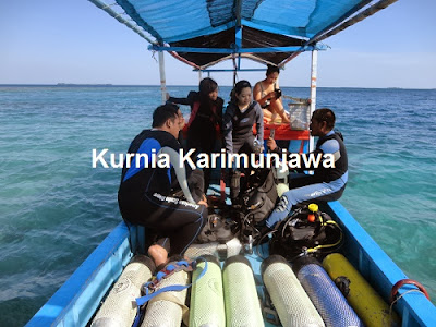 paket diving karimunjawa