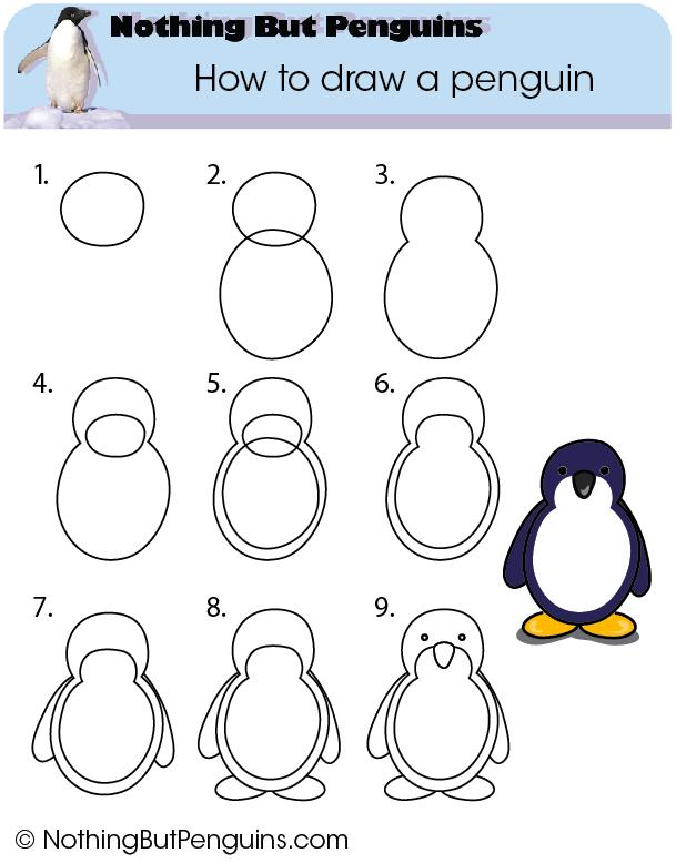 How To Draw A Baby Penguin