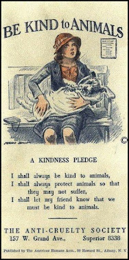 Be Kind to Animals Pledge