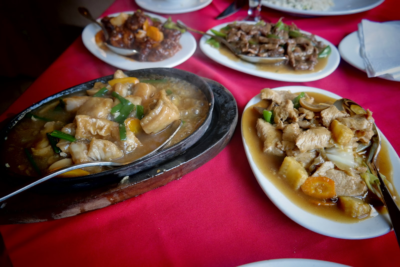 shredded beef, sweet and sour pork, hot plate fish, chicken and vegetables