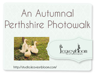an autumnal Perthshire photowalk in October