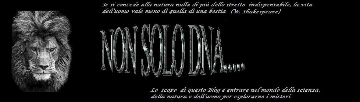 NON SOLO DNA...