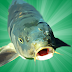 Game Gratis Android Carp Fishing Simulator  Memancing Ikan