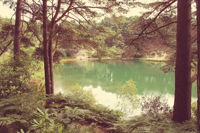 blue pool furzebrook