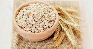 oat untuk diet