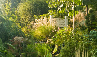 asheville b&b gardens