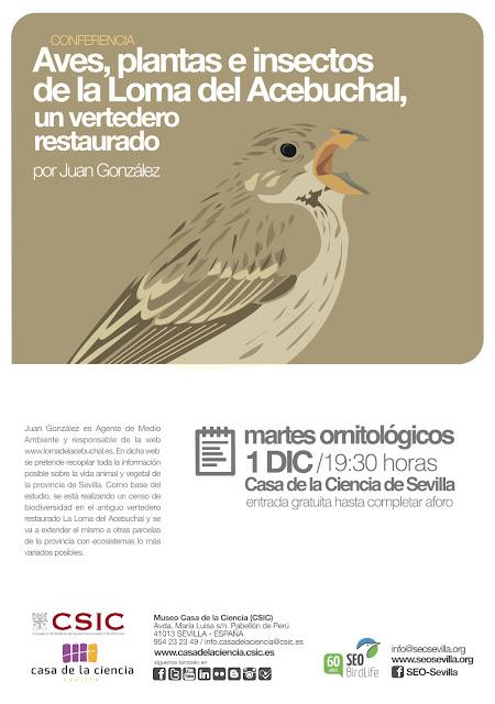 """Conferencia ornitológica organizada por el Grupo Local SEO-Sevilla de SEO/BirdLife en el museo Casa de la Ciencia de Sevilla. """"Aves, plantas e insectos de la Loma del Acebuchal, un vertedero restaurado"""", por Juan González."""