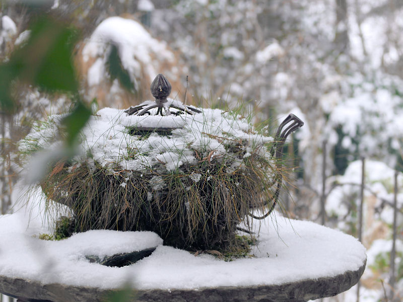 Meine gr ne leidenschaft gartendeko im schnee - Gartendeko winter ...