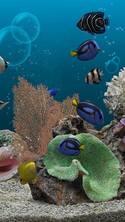 Картинки для рабочего стола аквариум с рыбками 6