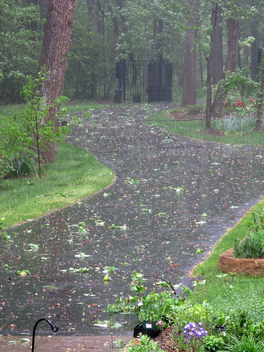 Days Of Rain Per Year Long Island Compare