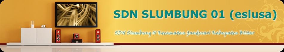 SDN SLUMBUNG 01 (eslusa)