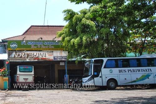 PT Sindoro Satriamas bus pariwisata