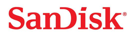 SanDisk Scholars Program
