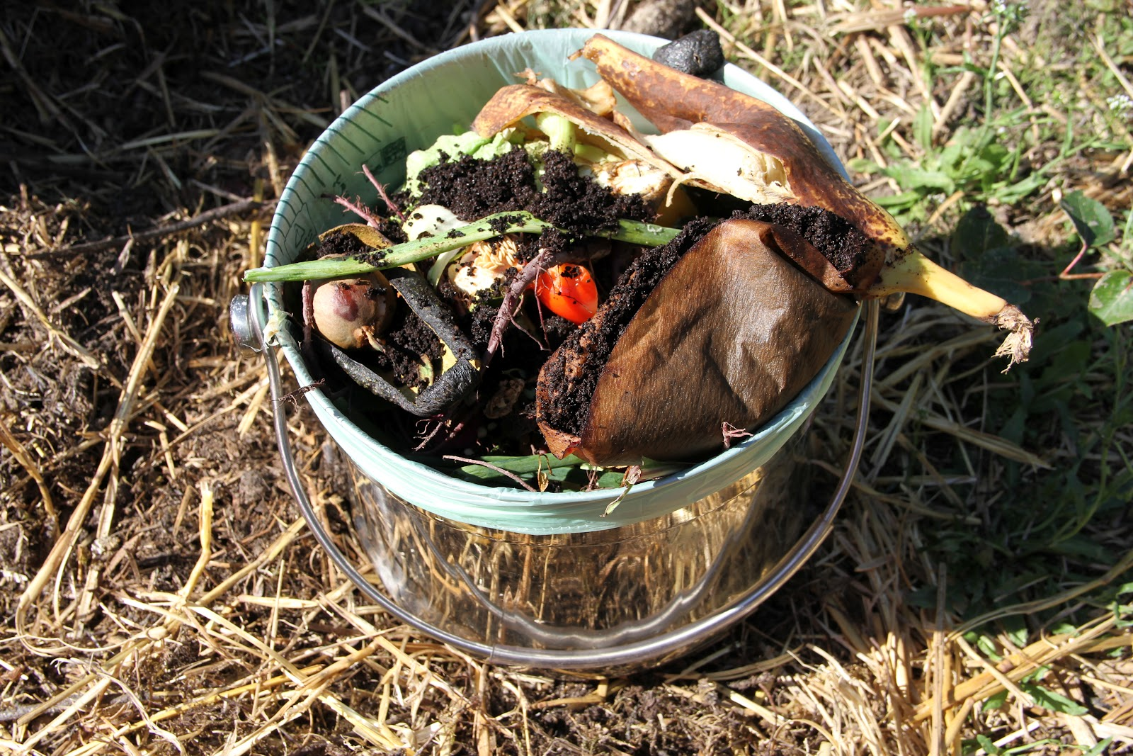 Garbage For Your Garden Alaska Master Gardener Blog