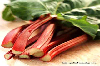 benefits_of_rhubarb_juice_fruits-vegetables-benefits.blogspot.co(benefits_of_rhubarb_juice_12)