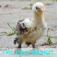 The Egg Basket