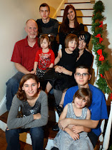 Our Crazy Family           (The 7 at Home!)