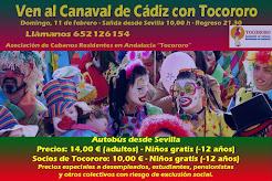 Ven al Carnaval de Cádiz