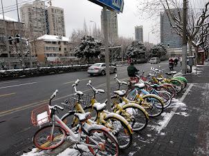 Enero 2018 Shanghái