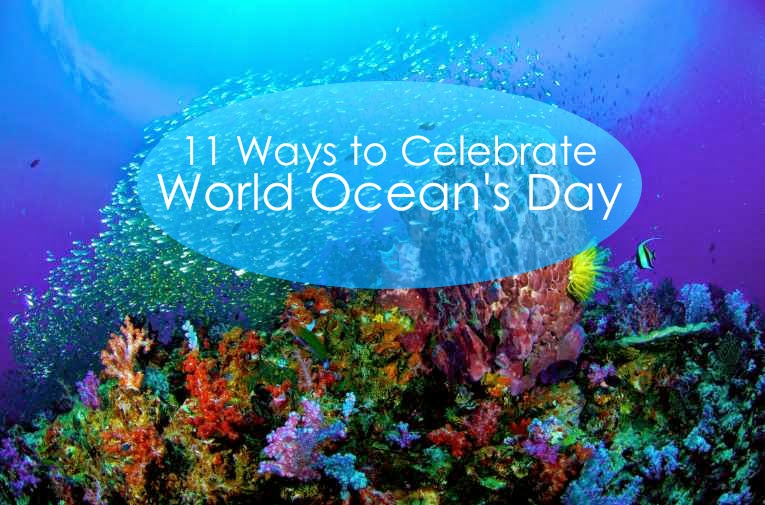 11 Ways to Celebrate World Ocean's Day